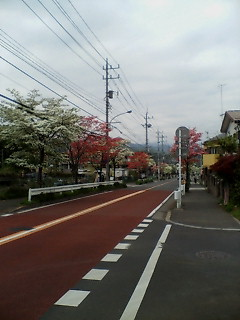 425hana_005