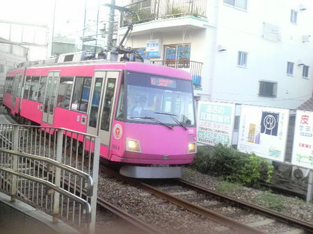 1028neko_002