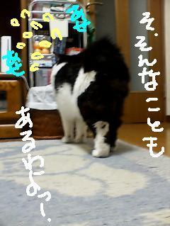 69suika_004sumo_1