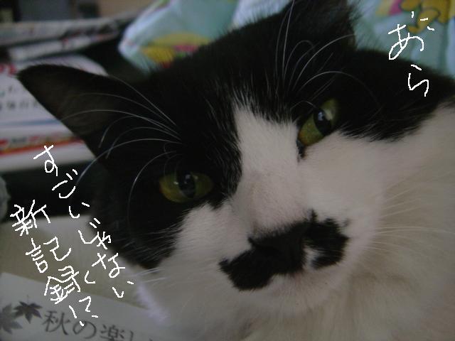 112aruku_0051_2
